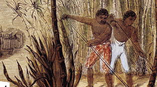 L' «Histoire du sucre, histoire du monde» retracée par James Walvin aux éditions de La Découverte