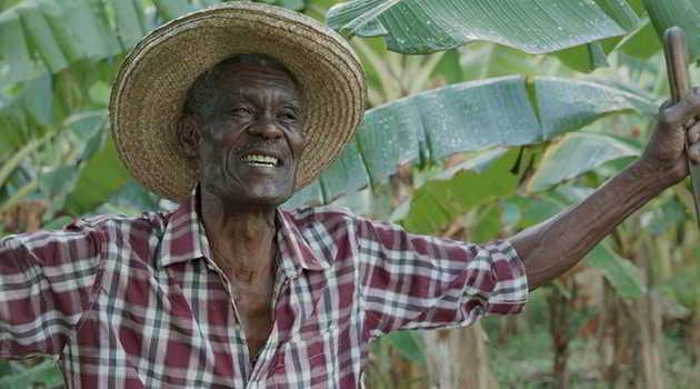 France Ô : Martinique, la reconquête de la terre